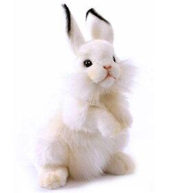 【HANSA】リアルぬいぐるみ白ウサギ35cm