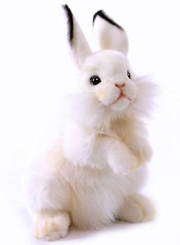【HANSA】リアルぬいぐるみ白ウサギ 30cm
