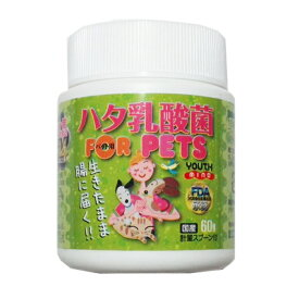 ハタ乳酸菌 FOR PET ペット用(60g入り 約2ヶ月分 計量スプーン付) 【FDA承認】