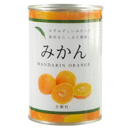 【楽天ランキング1位入賞】みかん缶