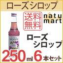 Nm00424-6