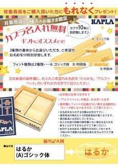 【送料無料】KAPLA(カプラ)カプラ280選べるデザインブック1冊セット(小冊子付き)【あす楽対応】【代引手数料無料】【ナチュラルリビング】