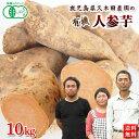 有機さつまいも にんじん芋10kg 鹿児島県産オーガニック【送料無料】