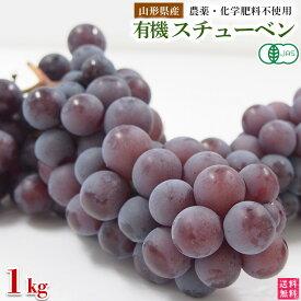 稲泉農園・山形県産有機スチューベン秀品(種ありぶどう)1kg(3房前後)