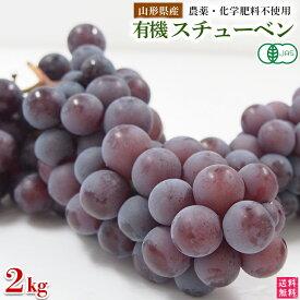 稲泉農園・山形県産有機スチューベン秀品(種ありぶどう)2kg(6〜7房)