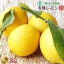 有機レモン3kg・神奈川県小田原産有機栽培(有機JAS)秀品・ギフト・贈答用【送料無料】
