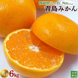 静岡県産外山農園の三ヶ日みかん・青島みかん(秀品)6kg【送料無料】