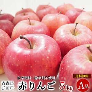 青森県産 自然農法特別栽培 赤りんご A品 5kg 【送料無料】