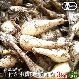 有機らっきょう3kg・鹿児島県産(国産・オーガニック)農薬化学肥料不使用・砂付き(泥つき)【送料無料】