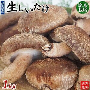 原木栽培「生しいたけ」1kg【送料無料】クール冷蔵便発送