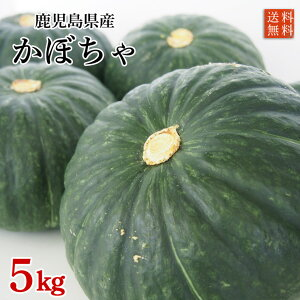 農薬化学肥料不使用・鹿児島県産かぼちゃ(恋するマロンまたはほっこり)5kg 【限定50箱 送料無料】