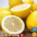 自然農法レモン2.5kg・愛媛産・国産・A品 送料無料