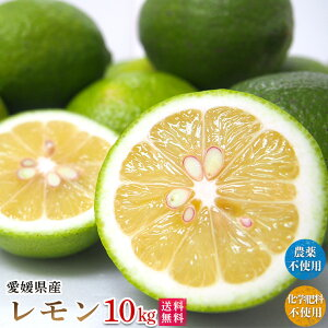 自然農法レモン10kg・愛媛産・国産・A品 送料無料