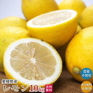 自然農法レモン10kg・愛媛産・国産・A・B混合 送料無料
