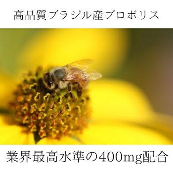 【送料無料】ナチュラルプロポリス150粒|健康美容免疫力抵抗力抗酸化ウイルス対策生活習慣サプリメントブラジル産フラボノイド