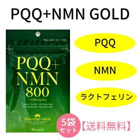 【レビュークーポンあり】【送料無料】PQQ+NMNGOLD(40カプセル)|ラクトフェリン健康美容エイジングケア長寿記憶サプリメントブレインフード