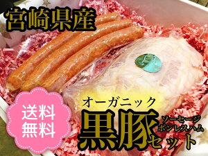 オーガニック黒豚 ハムソーセージセット 送料無料