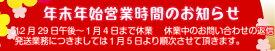 ★送料¥120〜★フェザー プロガード 替刃 15枚入