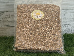 【パクパク麦 500g】そのまま食べても 美味しい 麦茶 無農薬無肥料 焙煎 天日干し六条大麦 無添加