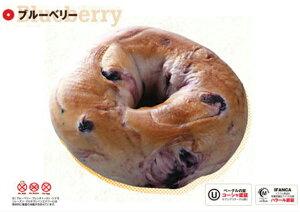 バスコ ベーグル(冷凍) ブルーベリー 6個入り 本場ニューヨーク直輸入 本格派 ハラル認証 コーシャ認証 取得 冷凍クール便