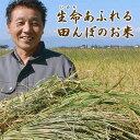 令和元年度産【生命あふれる田んぼのお米・玄米20kg】(4kg×5袋)産地直送