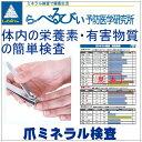 【爪ミネラル検査キット】送料無料◆らべるびぃ予防医学研究所