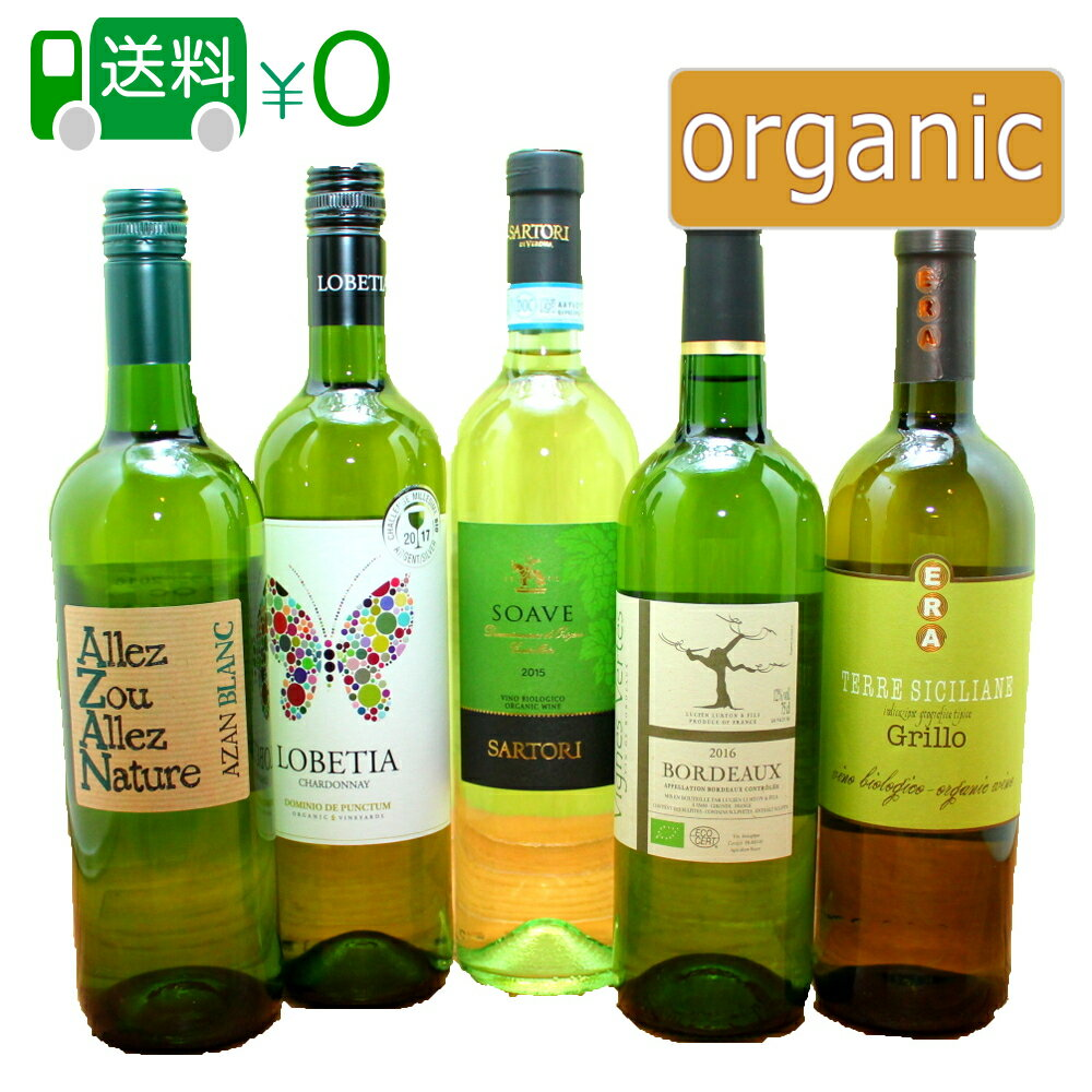 白 オーガニックワイン 5本セット