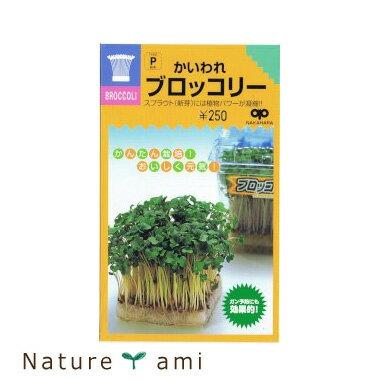 【種】 かいわれ ブロッコリースプラウト 種 40ml 5袋セット (メール便配送商品)