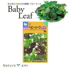 【種】 ベビーリーフ菜っぱミックス 種 20ml 5袋セット(郵便配送商品)