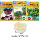 【栽培セット】 スプラウトプランター&スプラウトアソート3袋パック (メール便配送商品)