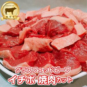 低糖質 赤身肉!牧草牛 イチボ肉(焼肉カット)1kg グラスフェッドビーフ  オメガ3脂肪酸 アミノ酸 糖質制限 腸活 アウトドア オージー・ビーフ 赤身肉  腸活 成長ホルモン不