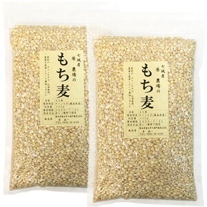 無農薬 もち麦(白もち麦) 300g 2袋セット 熊本県産 もち麦メール便での発送