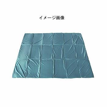ogawa(小川キャンパル) グランドマット3030 3844