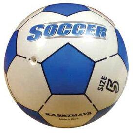 エーワン 5インチ サッカーボール ブルー No.5327-2