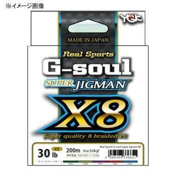 YGKよつあみ リアルスポーツ G-soul スーパージグマン X8 200m 2号/35lb