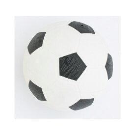 池田工業社 PVCサッカーボール(ノンフタル酸) 53940 U-5656