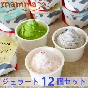 mamma イタリアンジェラート 12個セットA バニラ ほうじ茶 いちご 塩 チョコレート メロン 抹茶 黒豆 ミックスジュース みかんシャーベット アイスクリーム 詰め合わせ アイスクリーム スイー