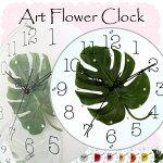 美しいお花の掛け時計♪アートフラワークロックガーベラホワイトGERBERAWhiteSTARLINEスターラインSW-1186WT