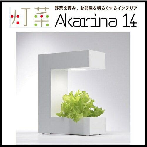 LED 水耕栽培 キット 土を使わずに簡単に栽培できます! Akarina14 灯菜 アカリーナ オリンピア照明 OMA14