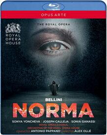 ベッリーニ:歌劇《ノルマ》[Blu-ray]