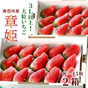 秀品 いちご 章姫 あきひめ 2箱 大粒 イチゴ 3L以上 長野県産 産地直送 フルーツ 旬の果物 苺 送料無料:c30