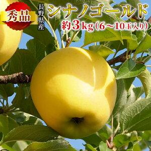 こだわりのりんご園から直送! 秀品 シナノゴールド 約3kg 6〜10玉入り りんご 長野県産 産地直送 黄りんご 林檎 リンゴ フルーツ 旬の果物 くだもの ゴールデンデリシャス 千秋 お取り寄せ
