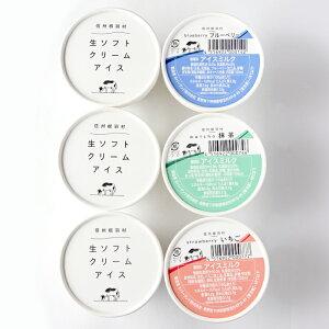 ★1月発送★南信州生まれのアイス『生ソフトクリームアイス』が入った詰め合わせ(10個) アイスクリーム :a02