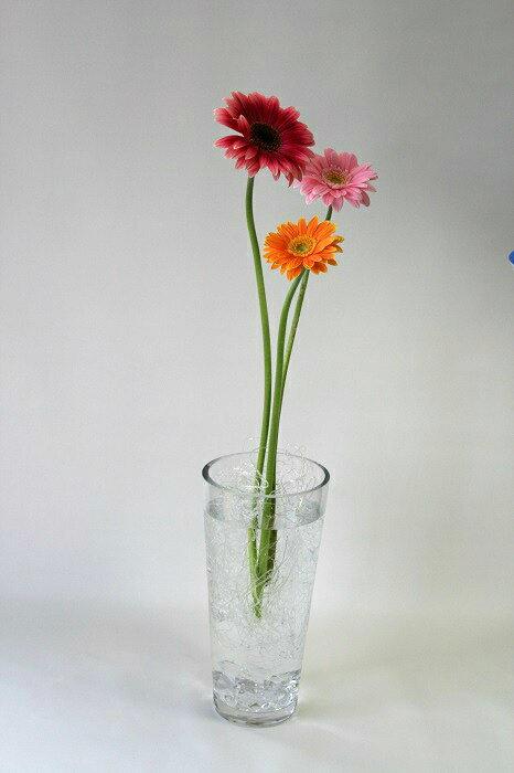 Rakuten & Tool for flower flagging down flower arrangement ねっこねっと (Rakuten original set) oasis flower arrangement components of a flower arrangement one simple ...