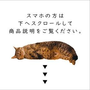 真鍮キャットシグネットリング CAT SIGNET RING【kura】