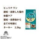 Nsl-one-003