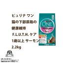 Nsl one 012
