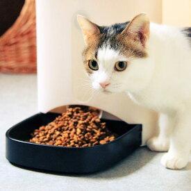 【ネコリパ会員】毎月30000円保護猫活動に!保護猫活動の助けになります!殺処分ゼロに向けて新しい猫助けの形!(メール便でのお届けのため、代金引換不可)(GIFU)