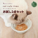 【50個限定 プレゼント付】necosekai キャットカフェタイム お試し2点セット(フリーズドライ&その他のおやつ)【猫…