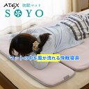快眠マット SOYO そよ 100×100cm 涼感寝具 扇風 マット AX-DM050H 専用シーツカバー1枚付き ハーフ エアコンマット …